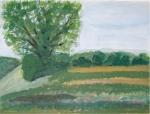 Landschaft - 2005