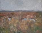 Boddenlandschaft - 2008