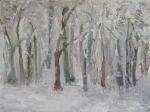 Winterlandschaft - 2009