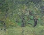 Bäume - 2011
