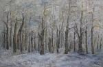 Winterwald - 2011